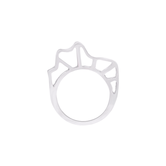 sarah-kosta-joyas-anillo-organico-en-plata-950-anplpl1458_d